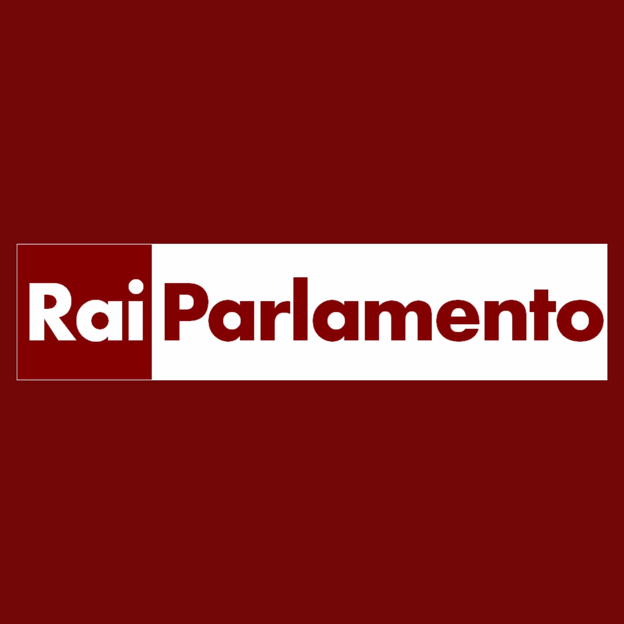 Logo rai parlamento