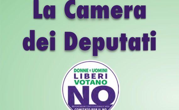 #iovotoNO Camera