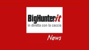 Big Hunter logo