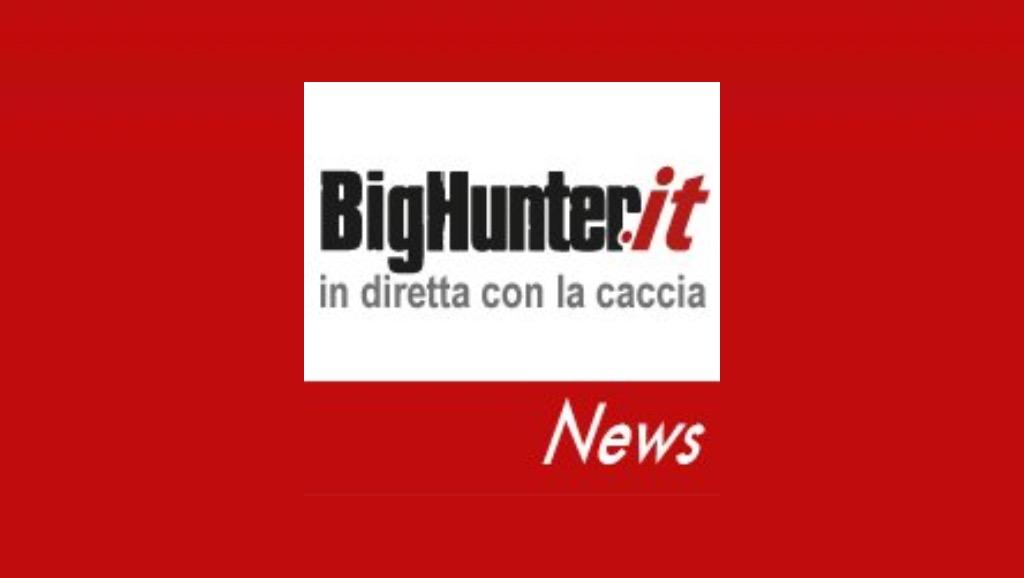 Big Hunter logo