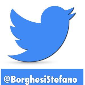 Twitter icona